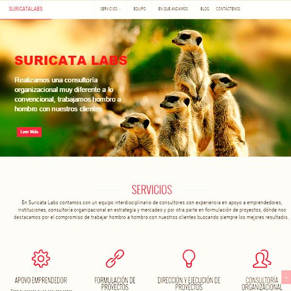 Web Suricatalabs